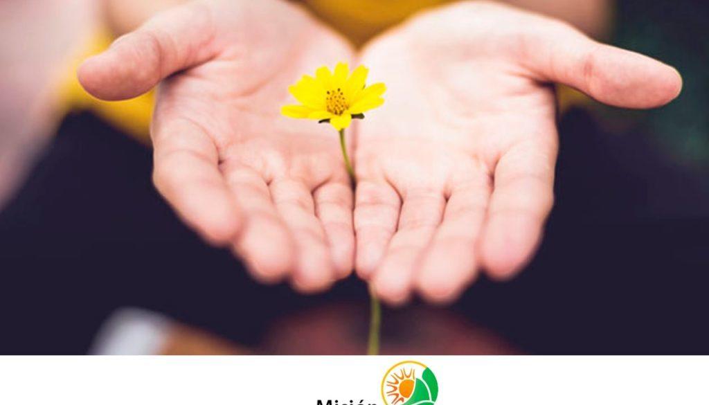 Clínicas de Rehabilitación Misión Nueva Esperanza, supérate cambia tu vida